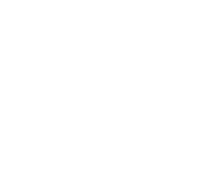 Services Comprehensive International Services Magellan Financial